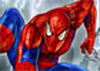 Spiderman Raid